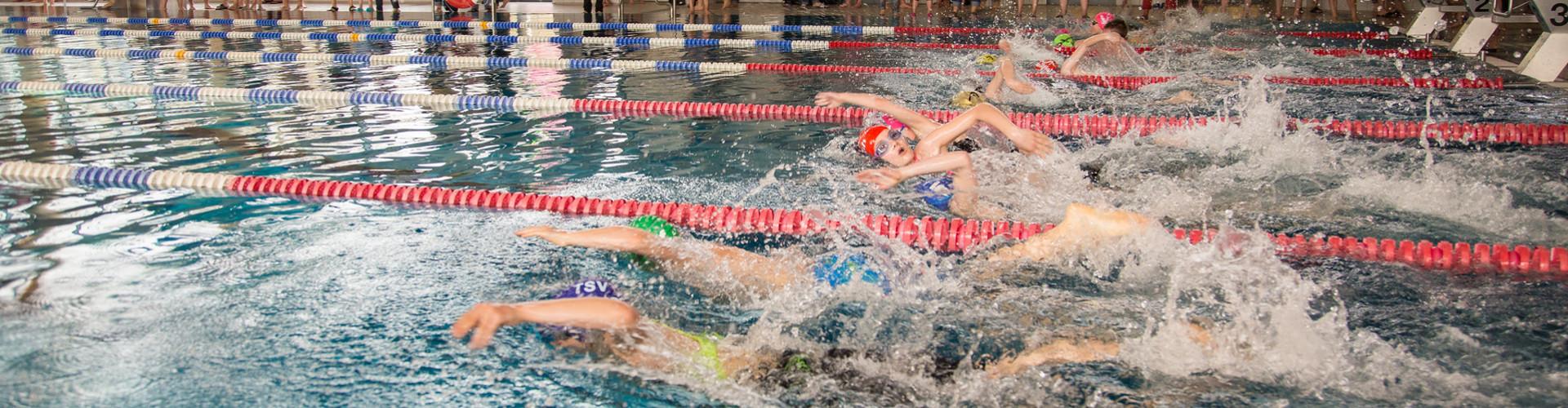 swimrun2016